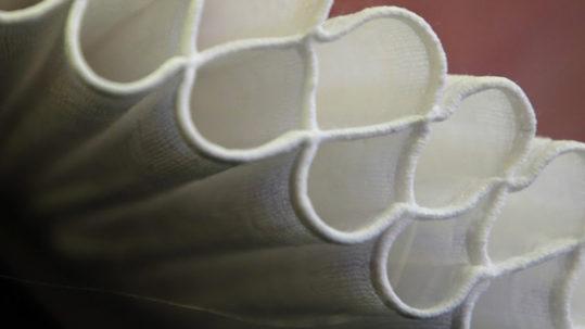 close up af Præstekrave