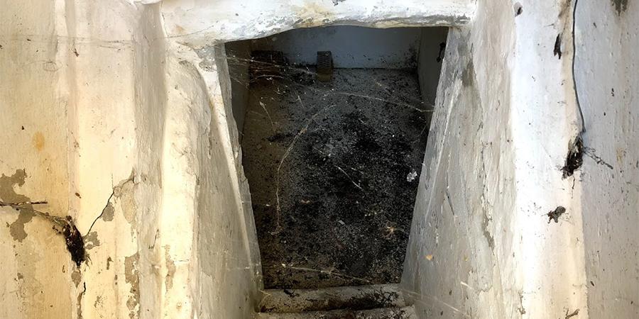 Kælder med skimmelsvamp