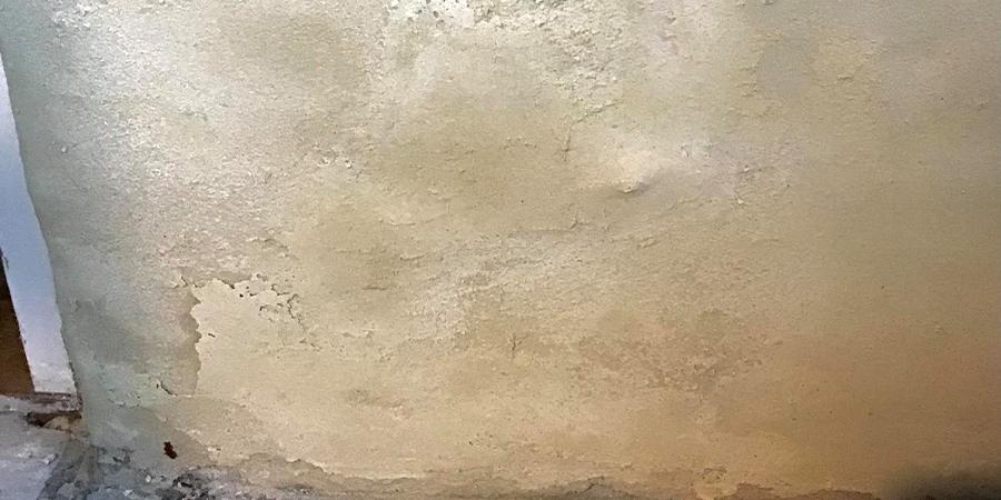 Væg med skimmelsvamp